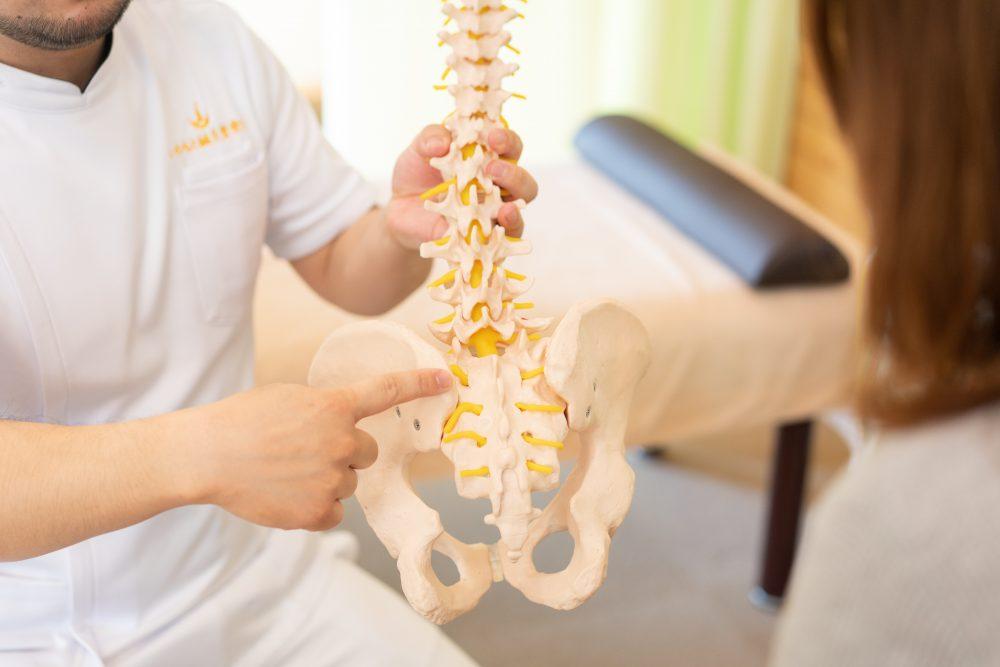 腰の痛み|富谷市で整体をお探しの方へ